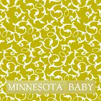 Minnesota Baby Cover